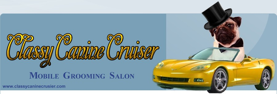 Classy Canine Cruiser Mobile Pet Grooming serving Nassau County Long Island